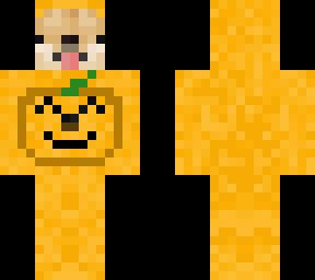 Doge in pumpkin costume